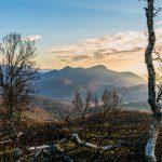 Durøy mountain view